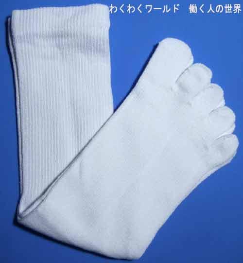 19015本指靴下