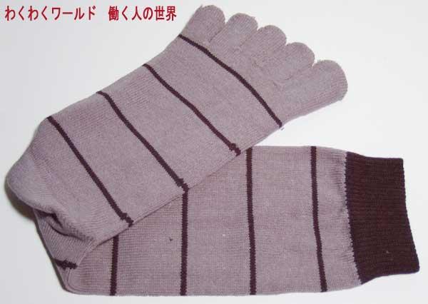 5本指靴下:綿ボーダー柄